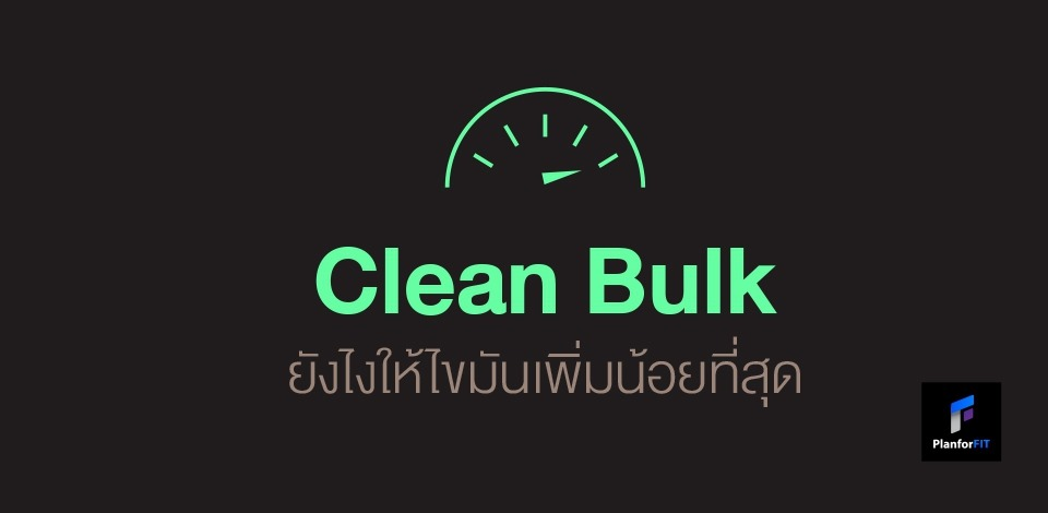 Clean Bulk ยังไงให้ไขมันเพิ่มน้อยที่สุด