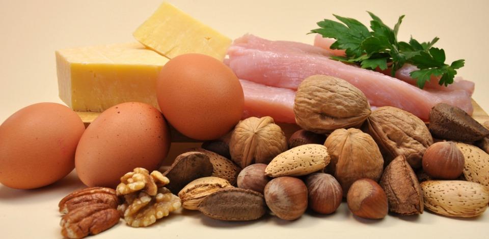 ความสำคัญของโปรตีน