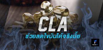 CLA ลดไขมันได้จริงมั้ย