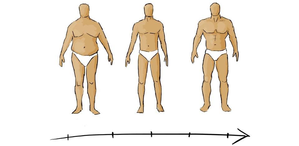 อาหารเสริมพื้นฐานสำหรับเพิ่มกล้ามเนื้อ/น้ำหนัก