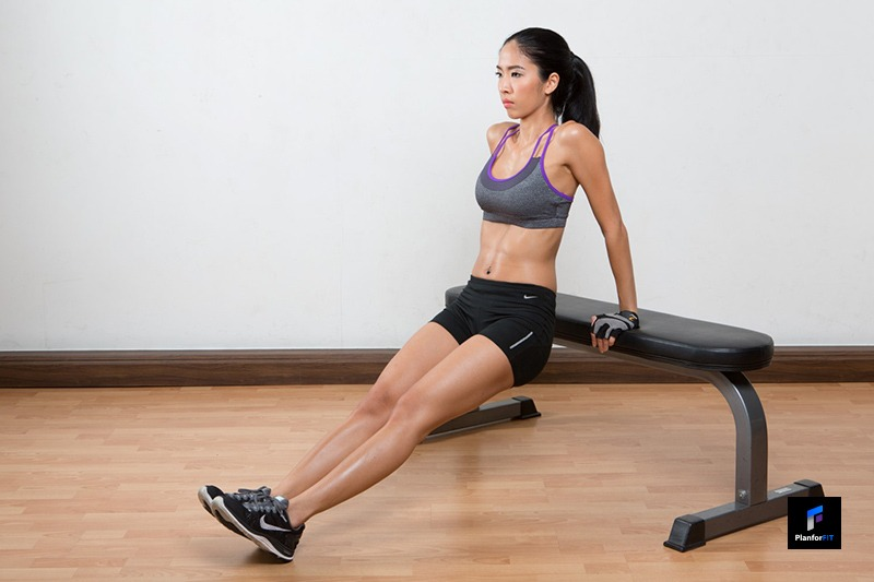 Women Bench Dips Start