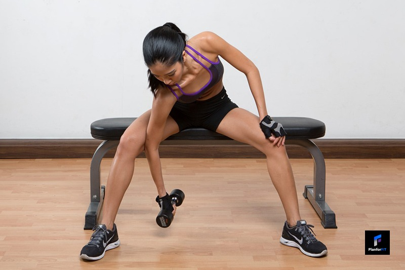 Women Dumbbell Concentration Curl Start