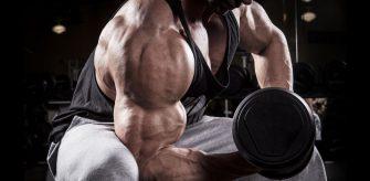 3 ท่าฝึกเพิ่ม Biceps ให้ใหญ่