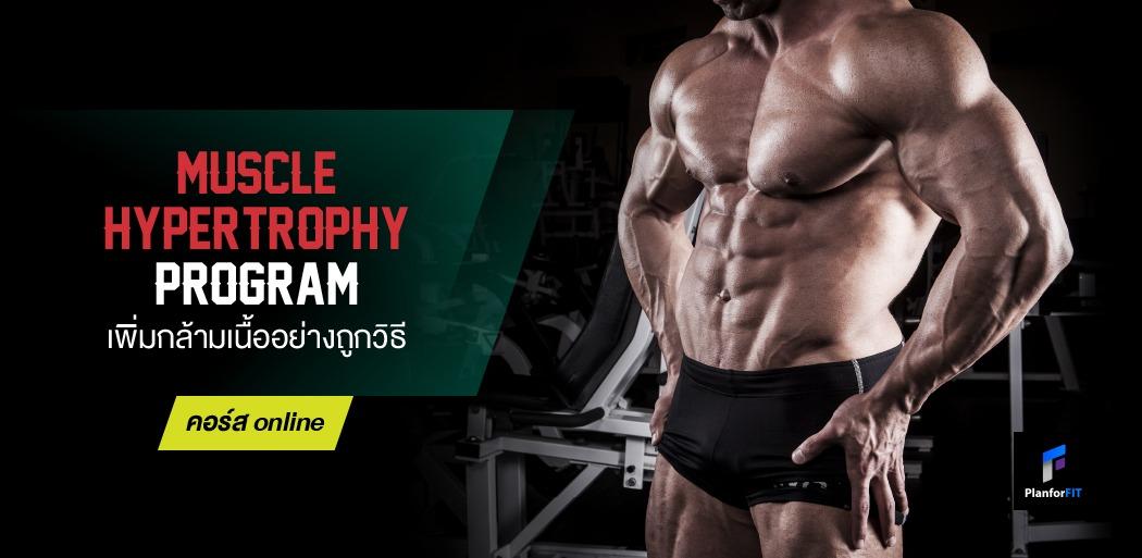 Muscle Hyper_banner-2