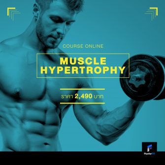 คอร์ส Online : Muscle Hypertrophy Program