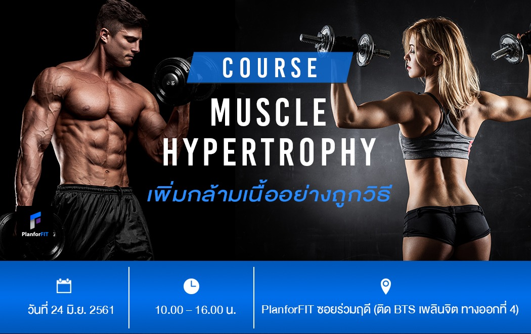 muscle hypertrophy workshop header