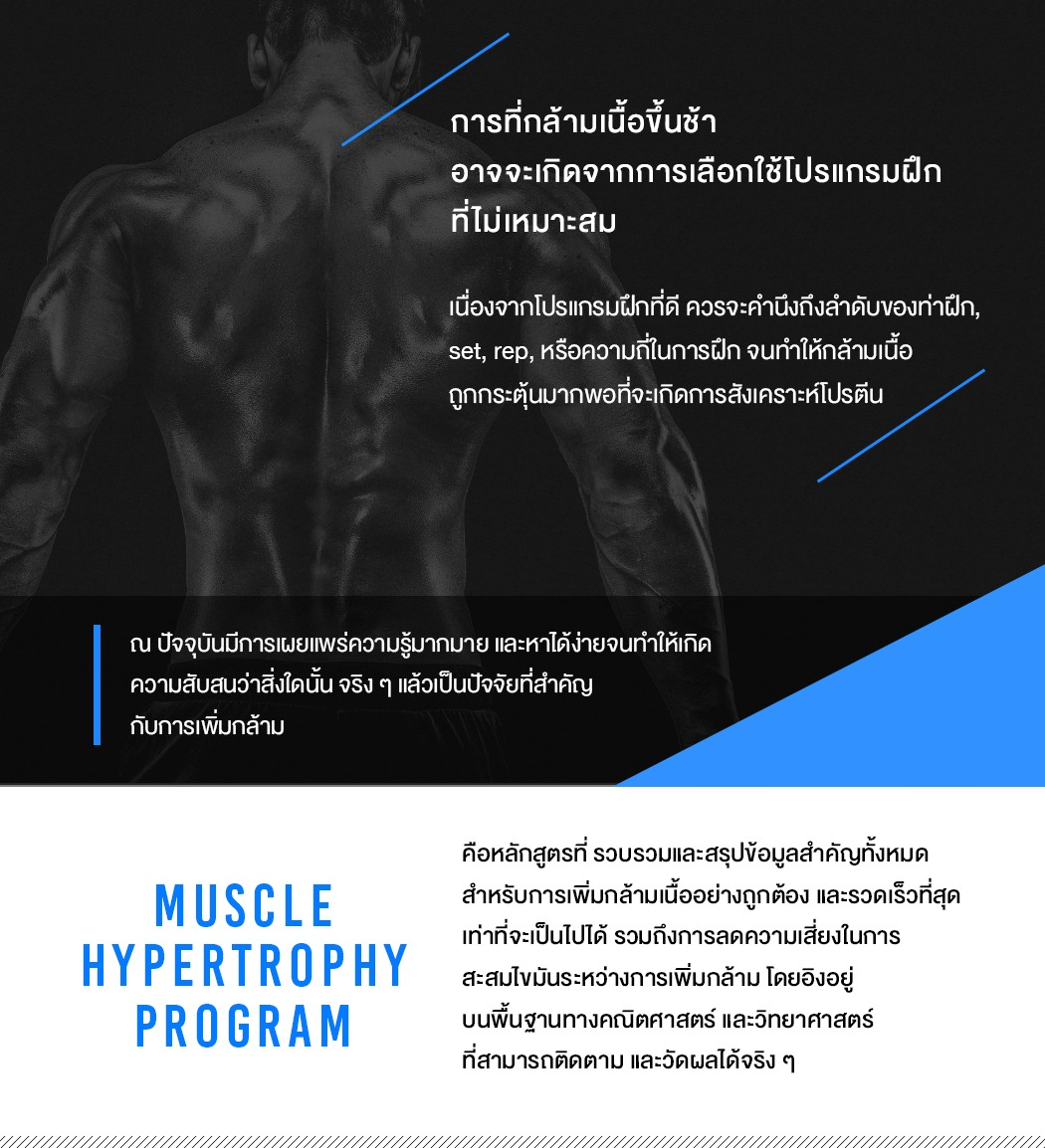 muscle hypertrophy workshop 2