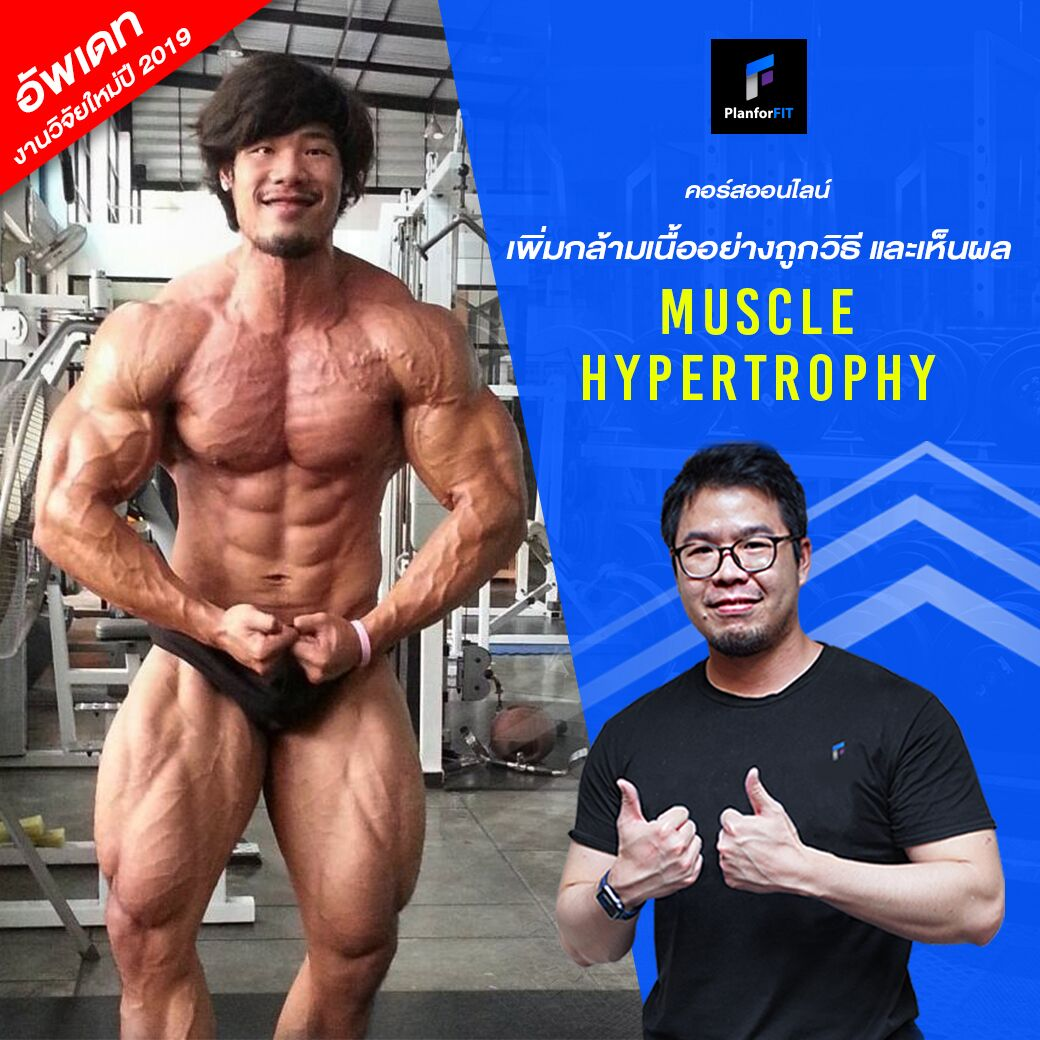 muscle hypertrophy planforfit